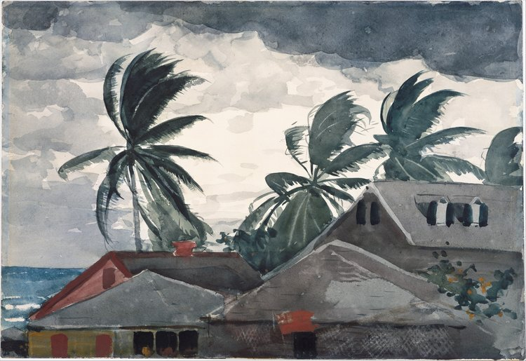 Homer s Hurricane