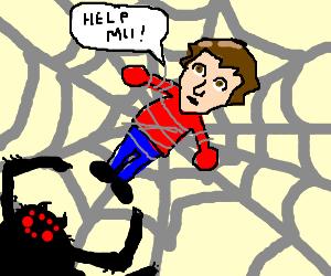 Man Stuck in a Web