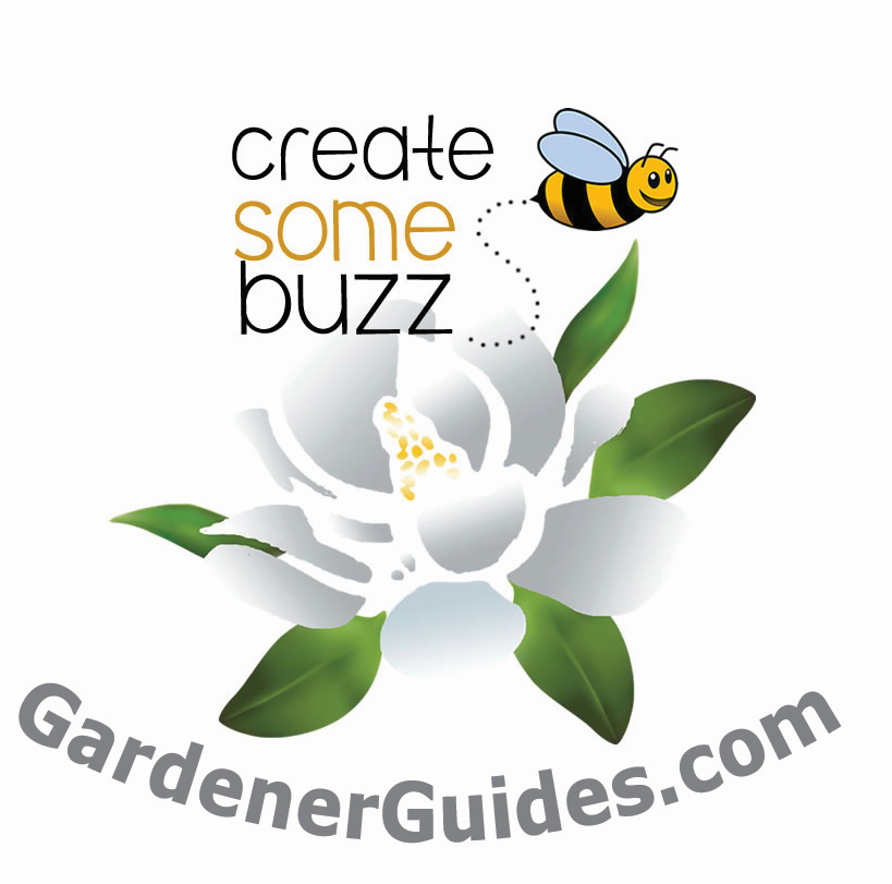 Create Buzz Med Res
