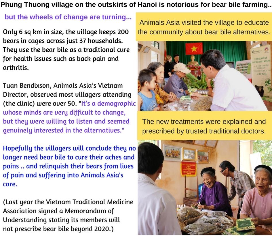 Phung Thuong Village story-4