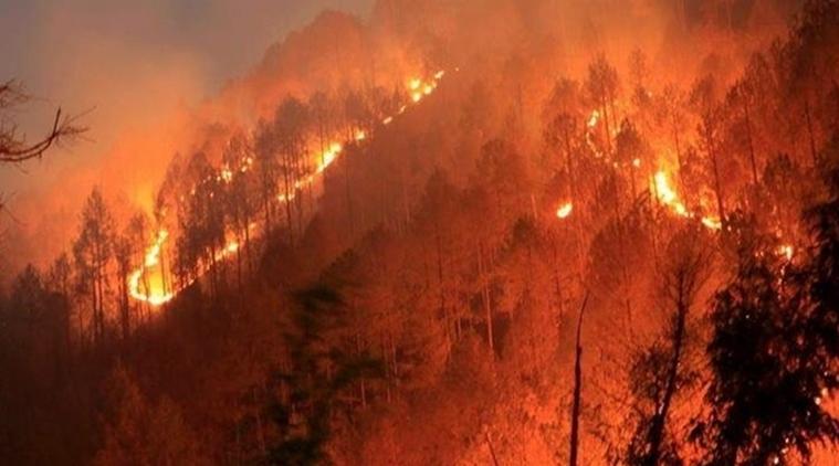 uttarakhand-fire-7592