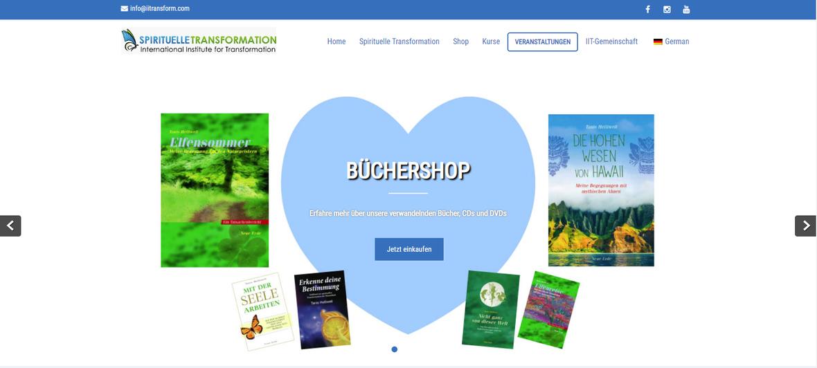 german-web-screenshot2