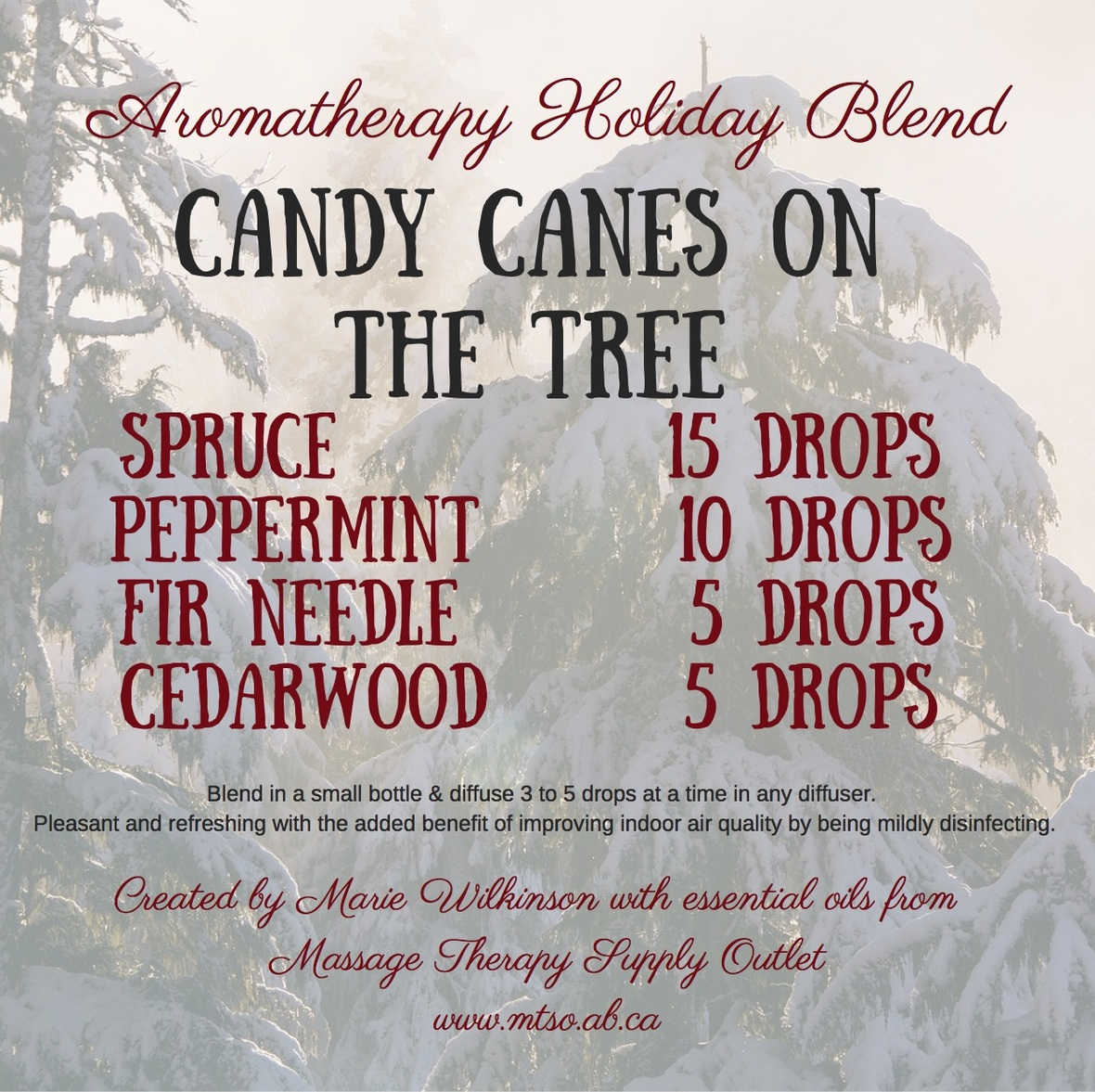 Candy Canes on the Tree - essential oils from MTSO