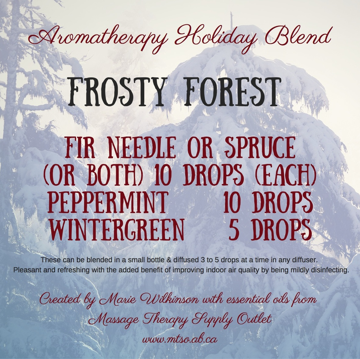 Frosty Forest - essential oils from MTSO
