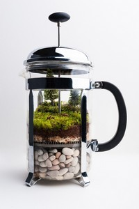 coffee-pot-terrarium