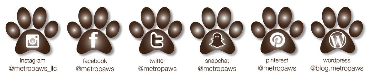 Mp SOCIAL MEDIA PAWS
