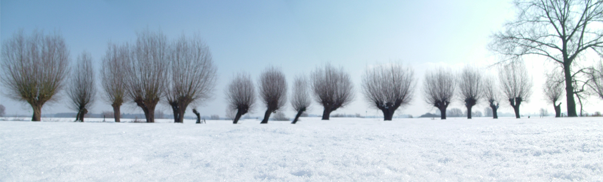dutch-winter-1402253