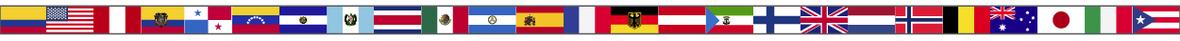 bandera final-01