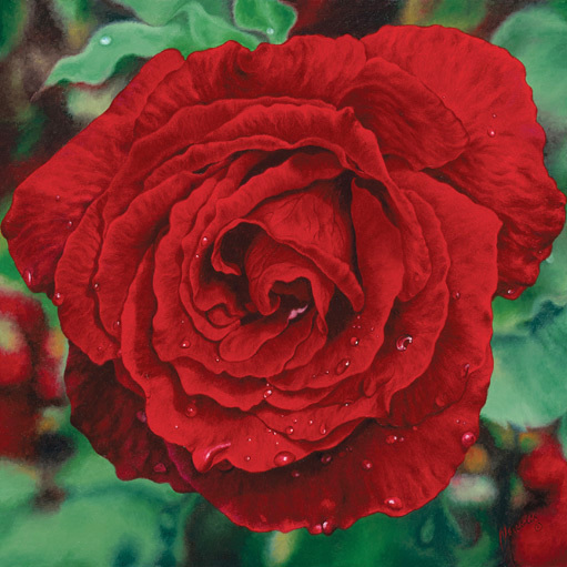 Red Rose XLG