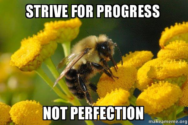 strive-for-progress not perfection