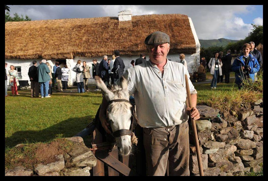Muckross farm