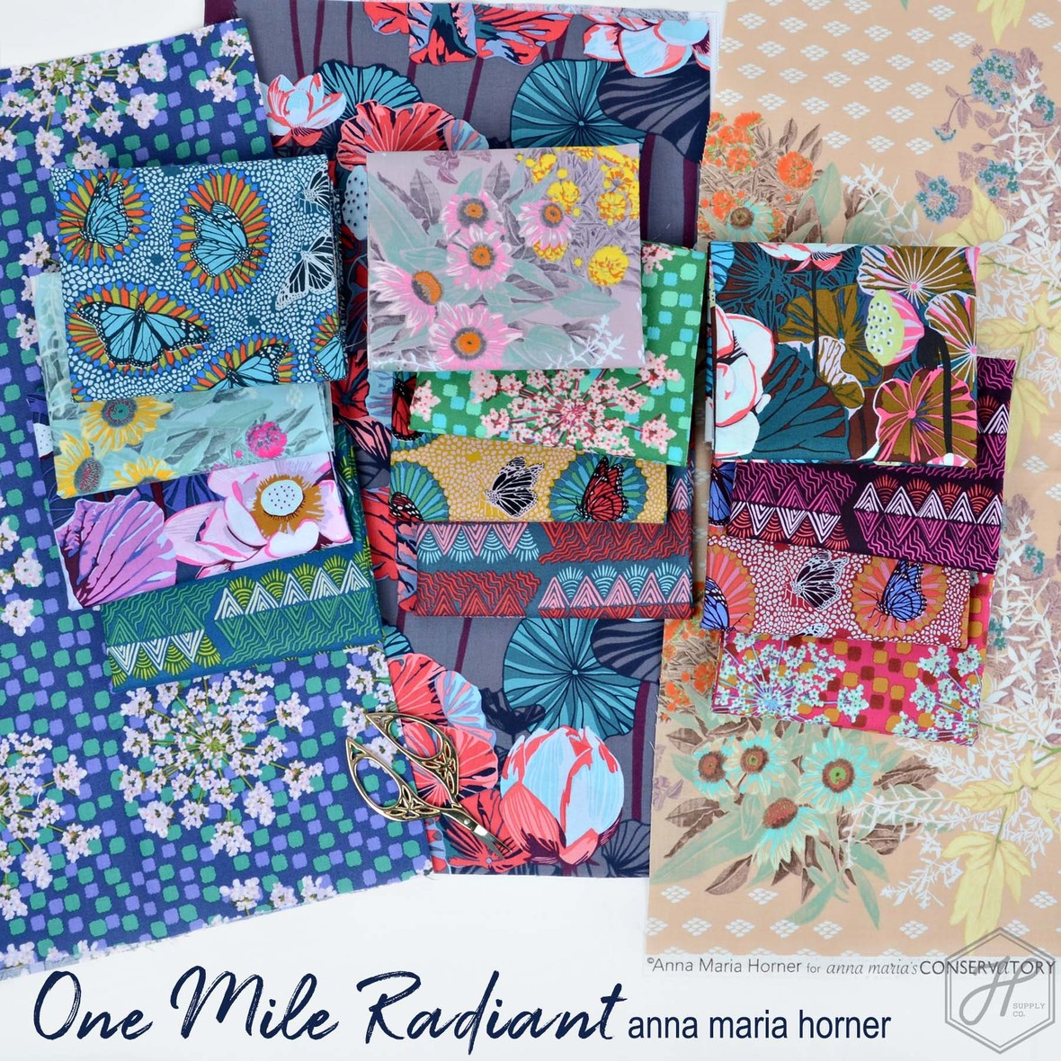 One Mile Radiant Anna Maria Horner Fabric Poster  1