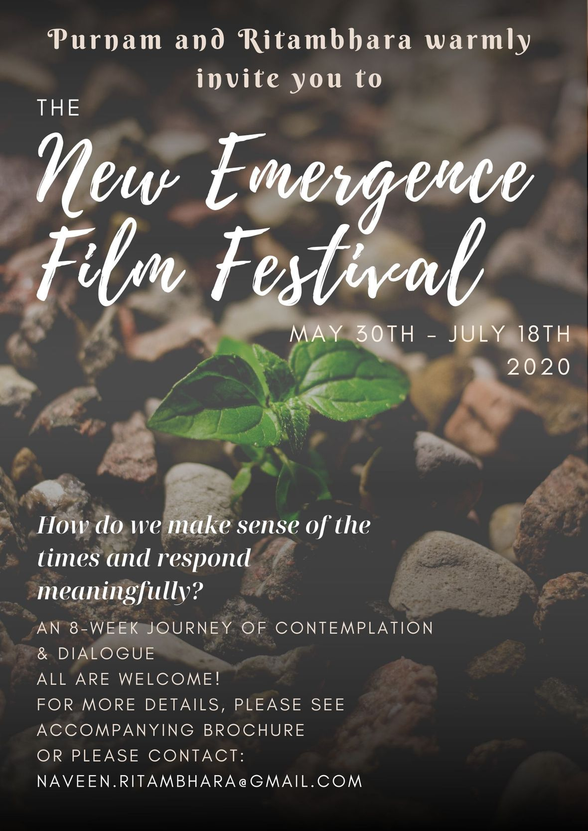 The New Emergence Film Festival - 2nd Edition - Poster