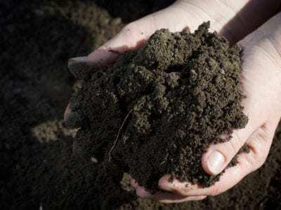 soil-1-400x300