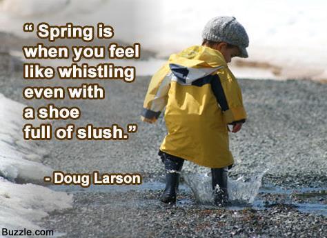 spring slush