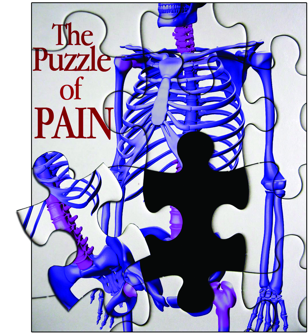 The Puzzle of Pain 150319-F-FC540-029