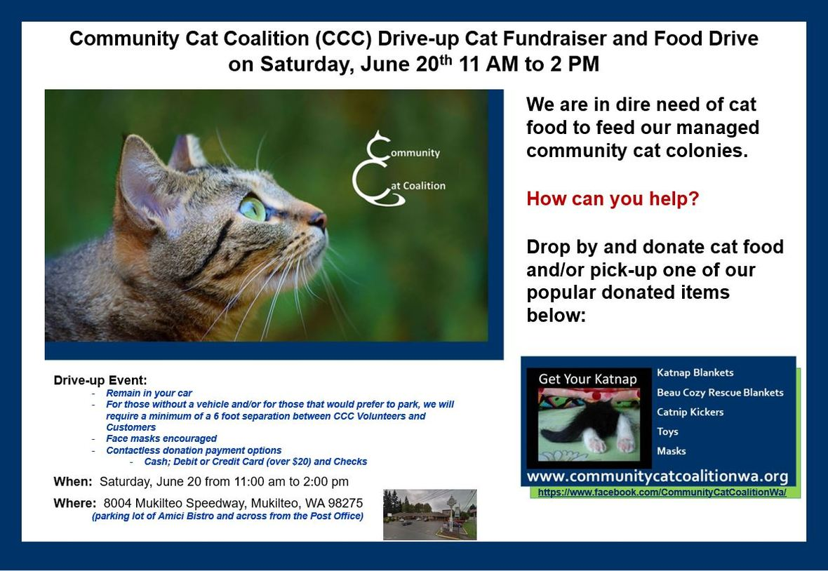 CCC Drive Up Cat Fundraiser and Food Drive on June 20 2020 - JPG Photo