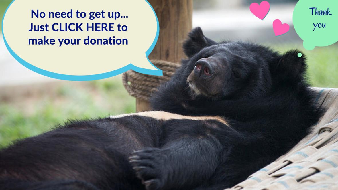 Donate the Lazy way