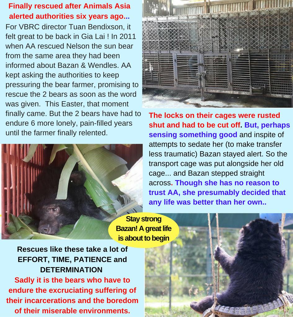 Bazan   Wendles rescue-2