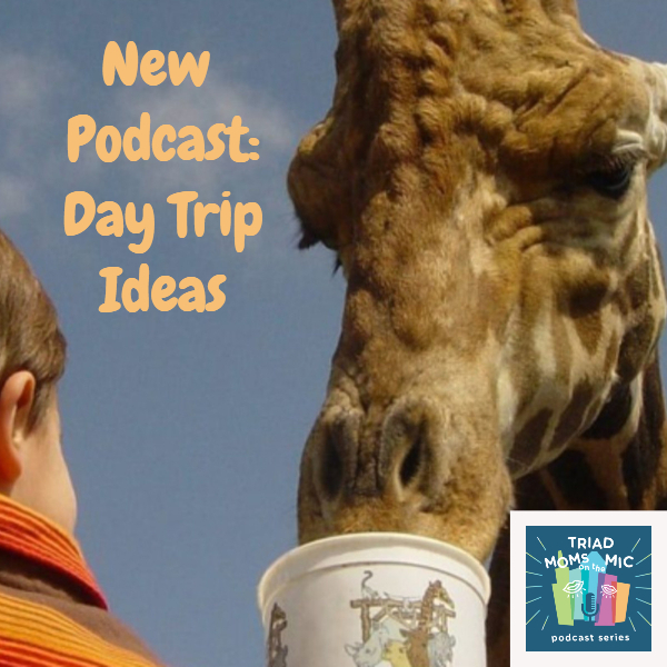 day trip podcast