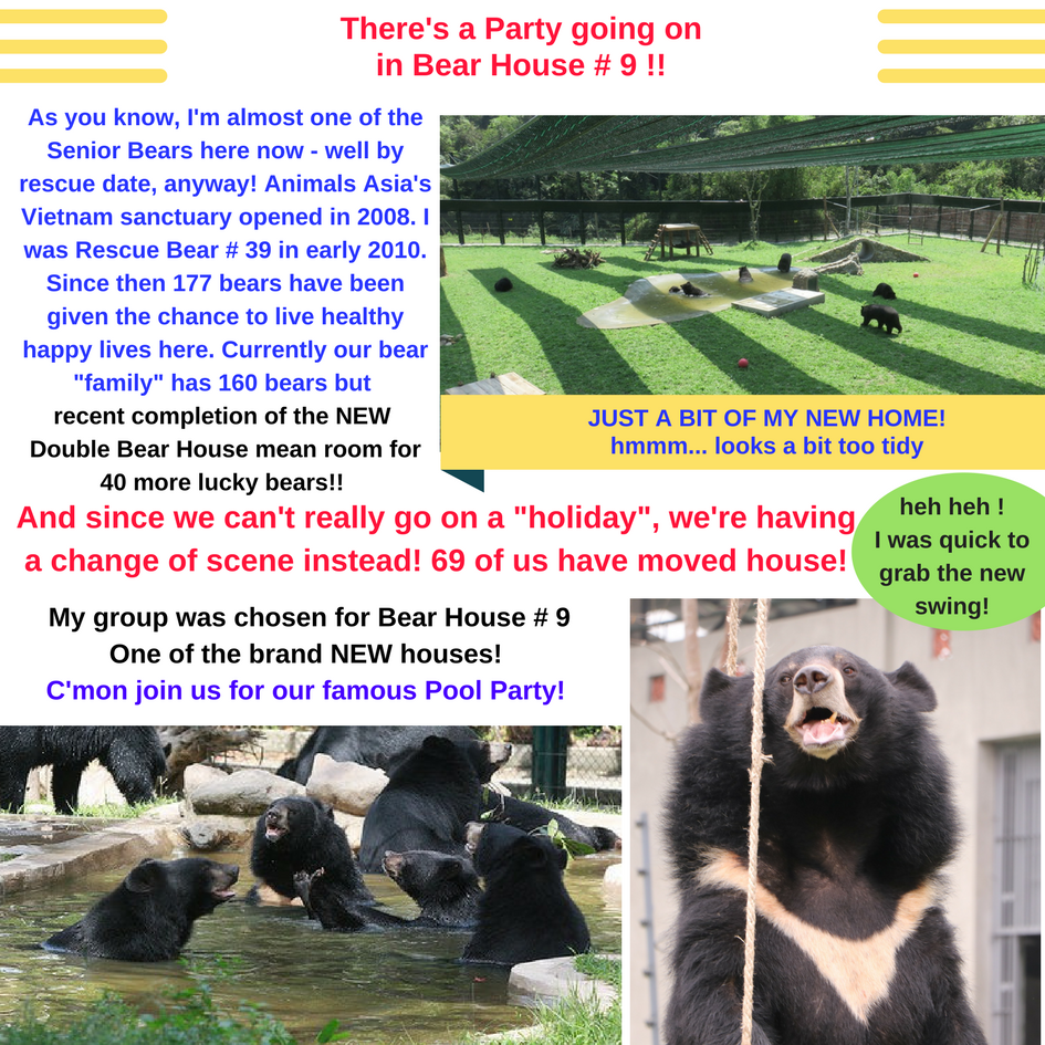 There s a Party going on in Bear House   9