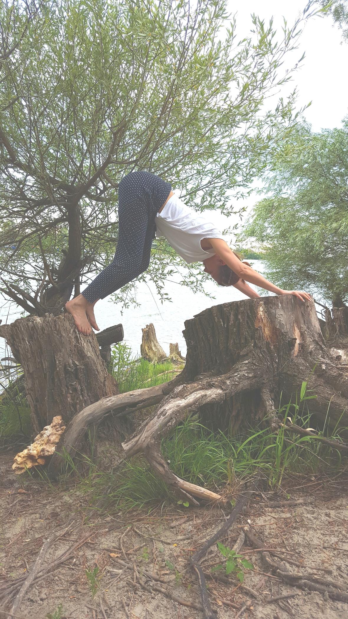 Yoga am Baumstamm