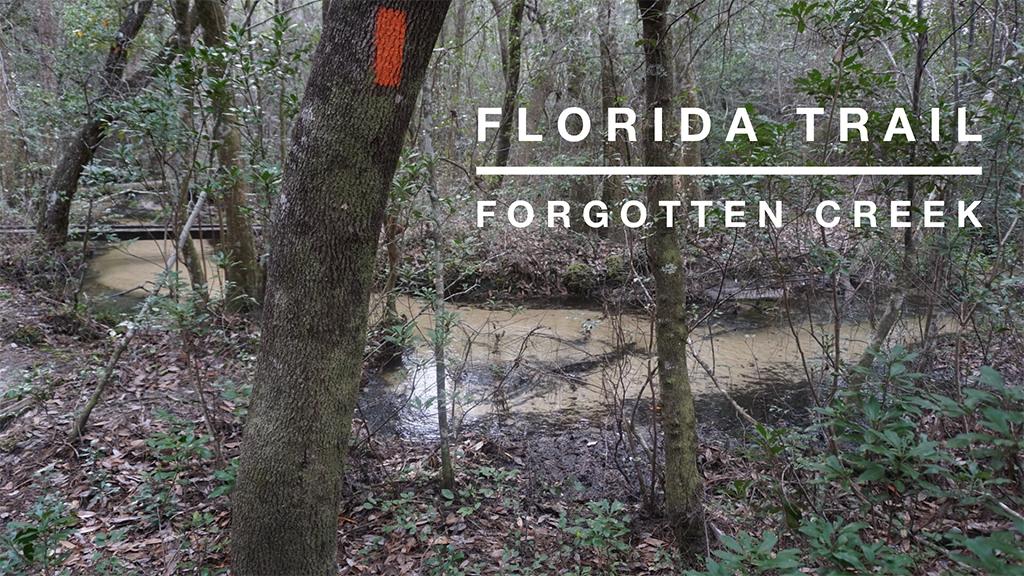 YT Nokuse Forgotten Creek cover