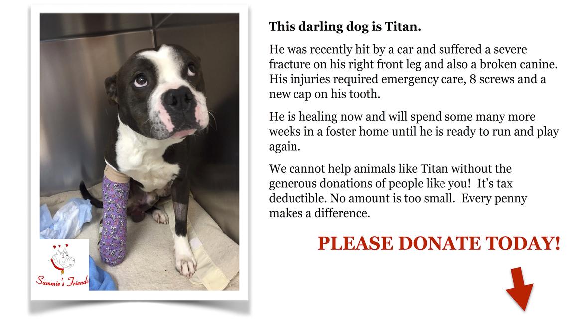 Titan Donation
