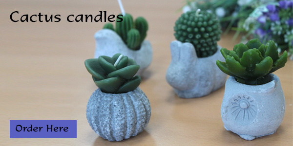 banner-cactus-candles