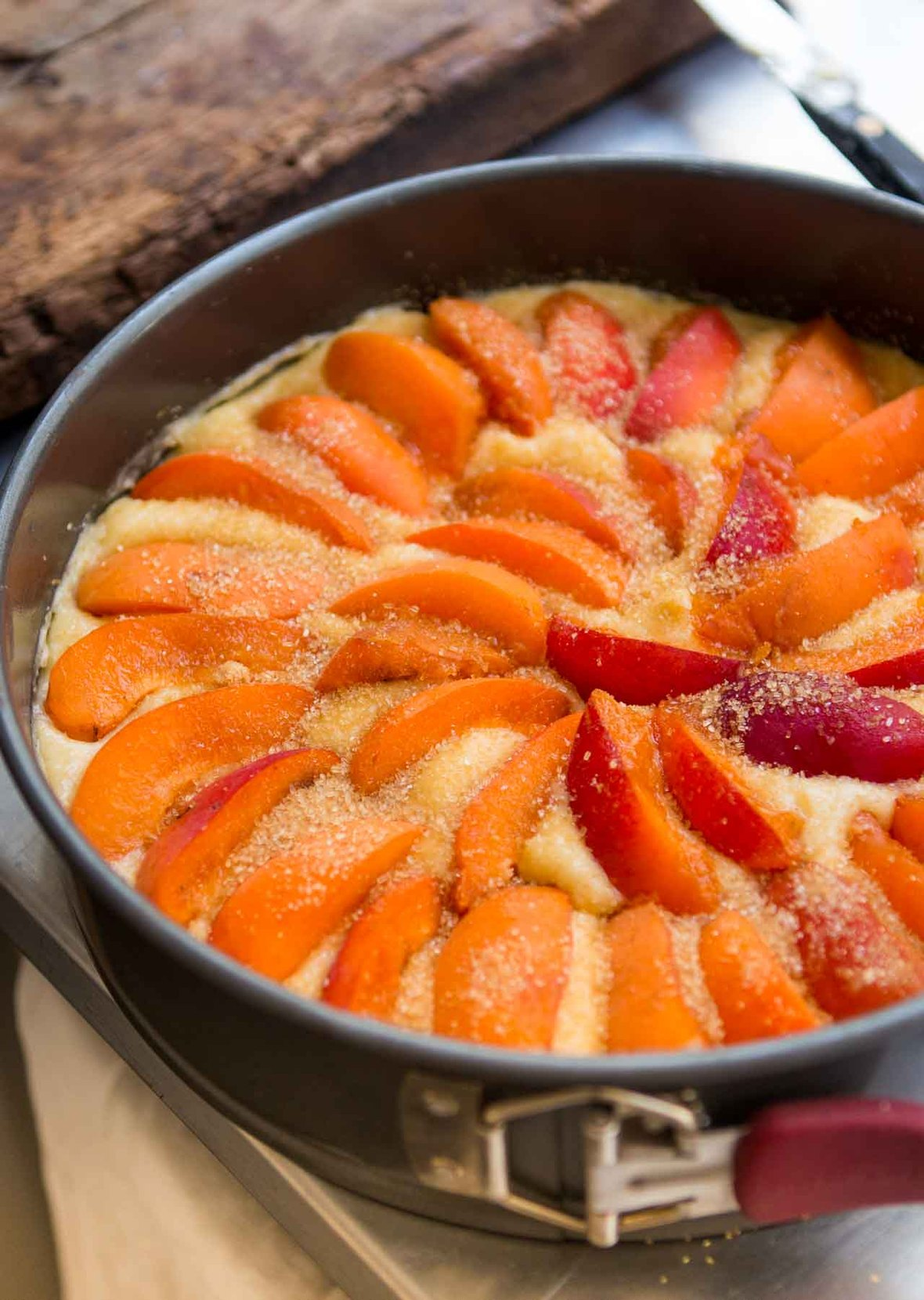 Moelleux apricot plum cake summer french dessert recipe fruits fruit-3