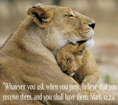 whatever you ask when you pray lions