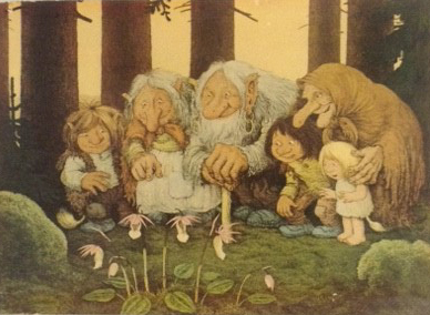 Trolls postcard-by Rolf Lidberg titled Orchids -cropped