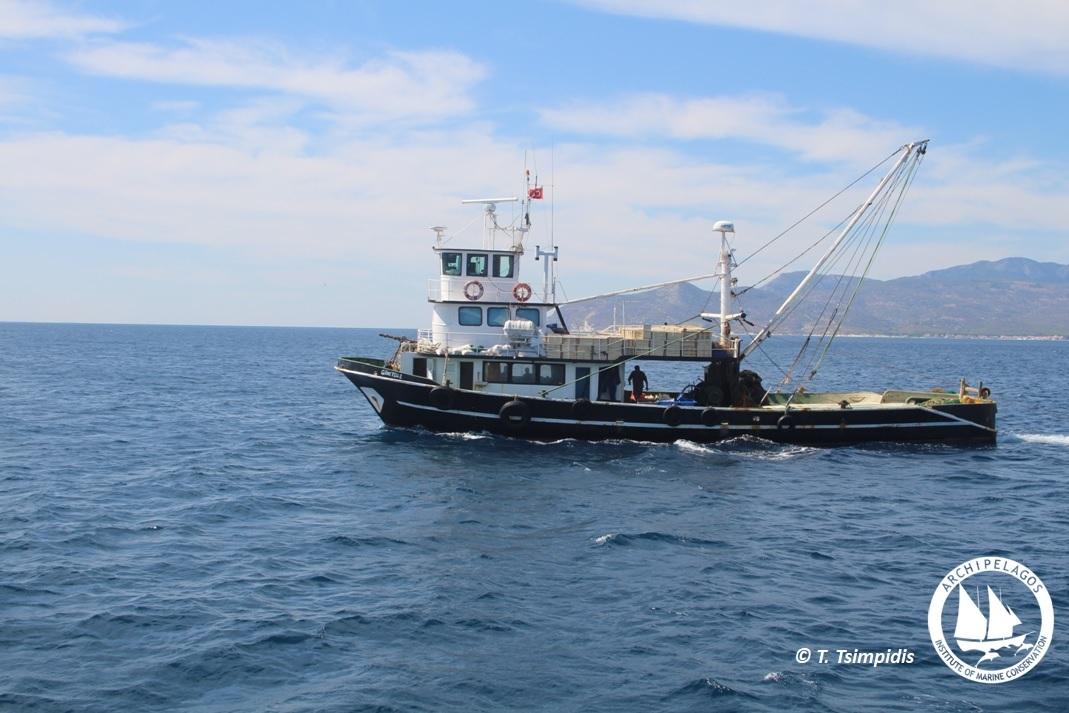 turkish trawler 1 LOGO