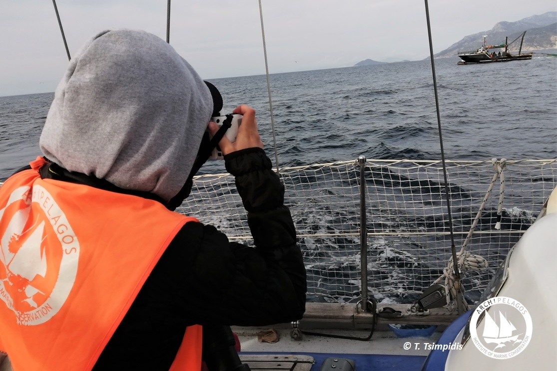 turkish trawler 3 LOGO