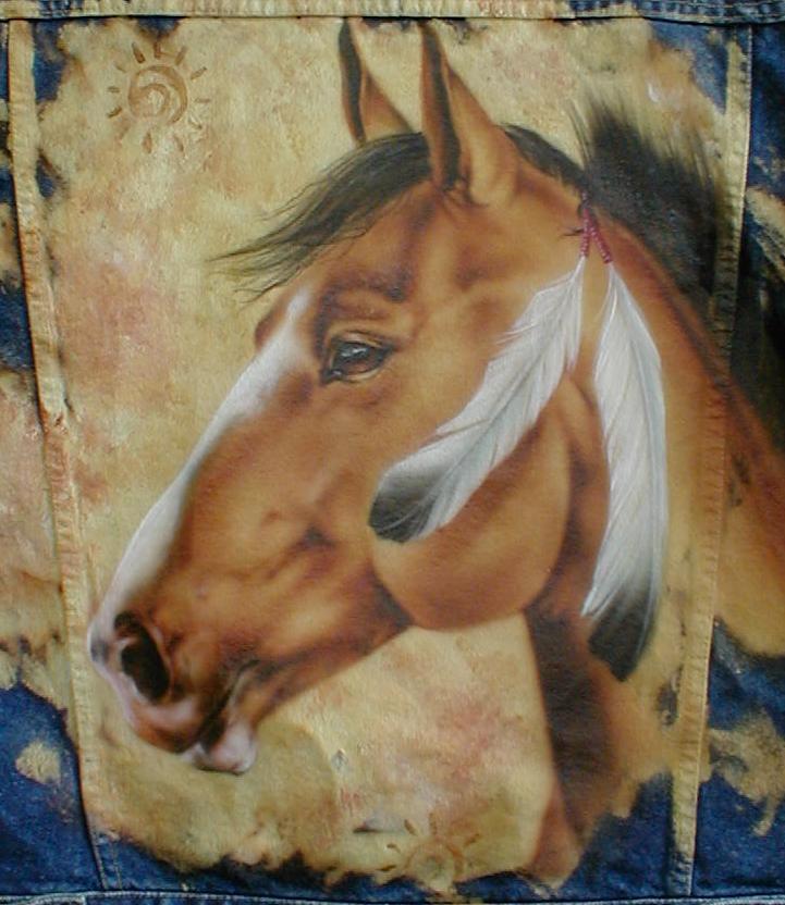 indian pony2