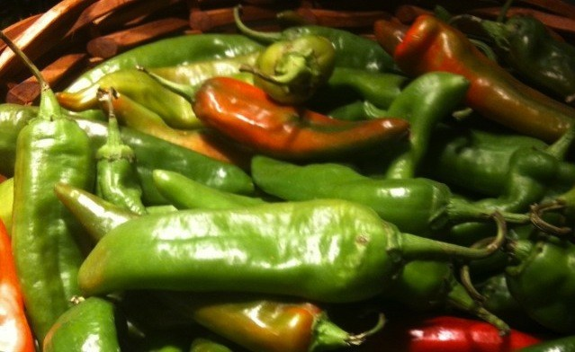 autumn harvest green chiles