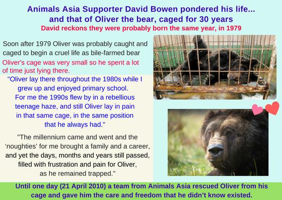 David Bowen Oliver