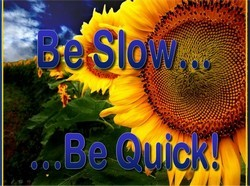 be slow be quick-250