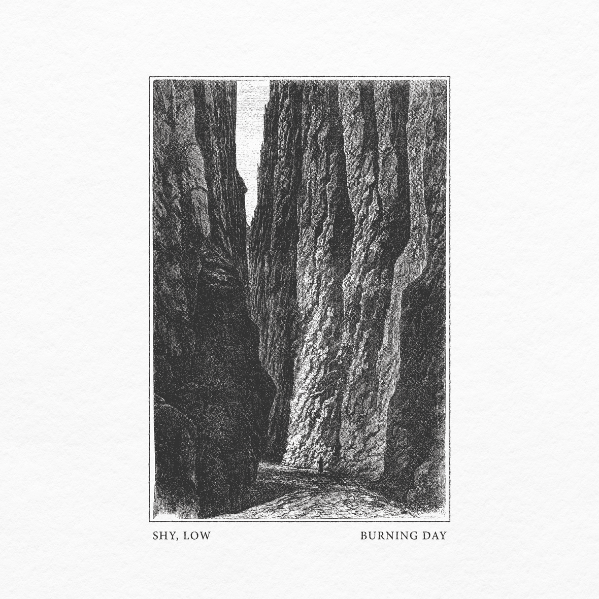 shy low burning day cover art