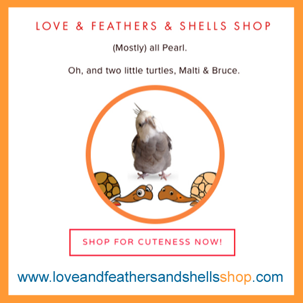 LFS-Shop-New-Widget