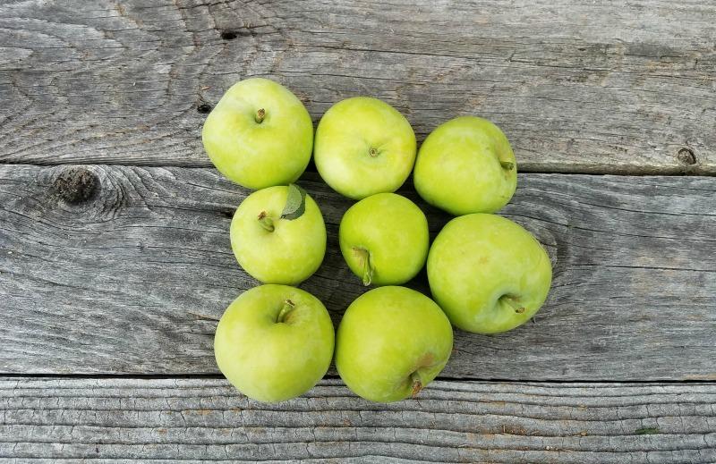 Lodi Green Apples r