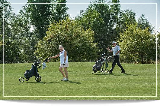 20 golf 12