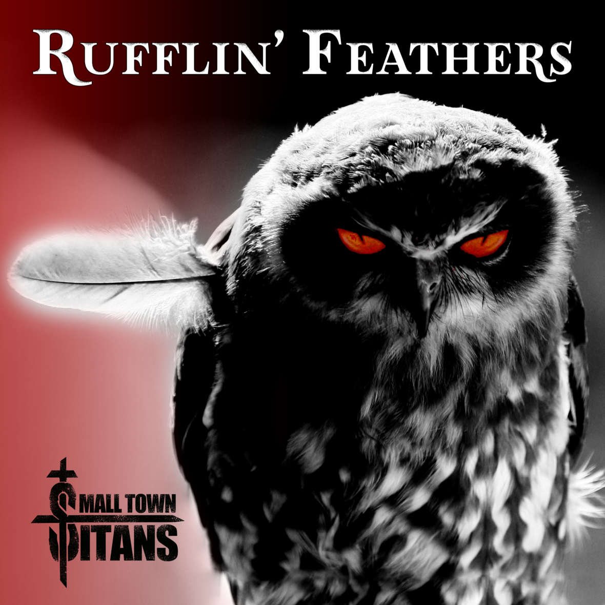 Rufflin Feathers Album Art