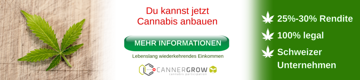 Cannergrow Banner Laengs-1320x296