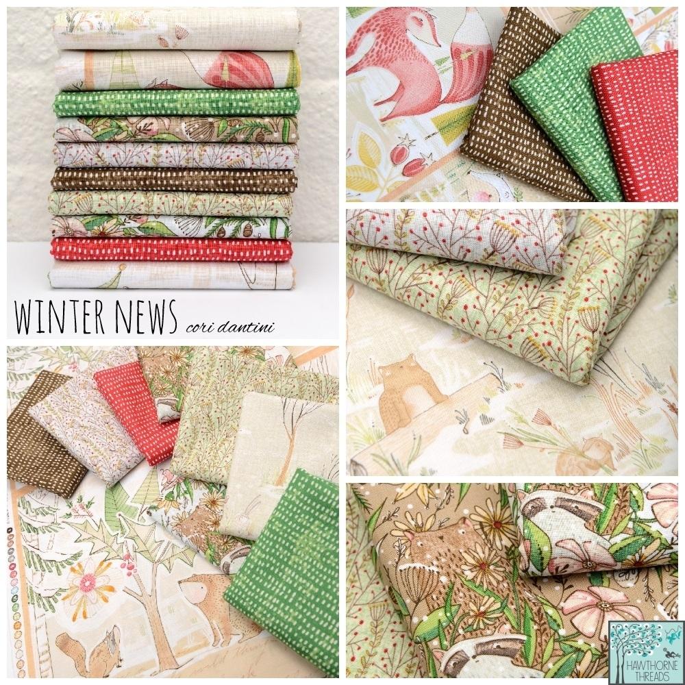 Winter News Cori Dantini Fabric poster