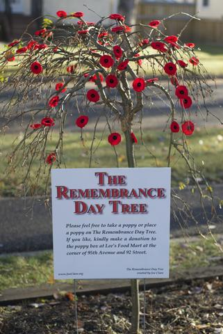 Remembrance Day Tree MTSO 2014