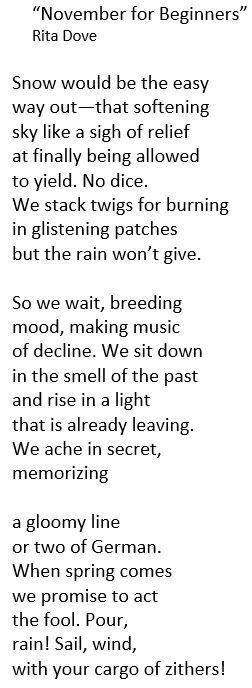 nov beginners poem