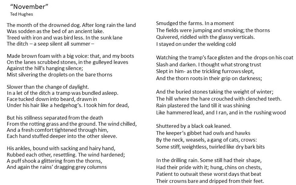 november 2 poem