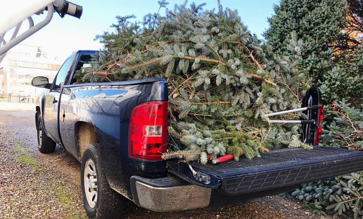 truck full of branches galehouse grave blankets nov 2020 cropped