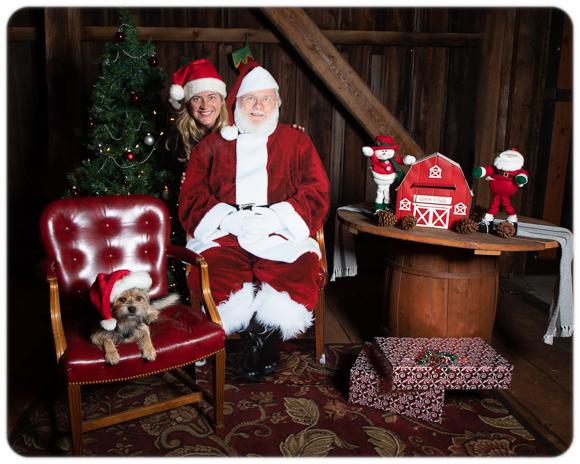 Holiday Portraits FB